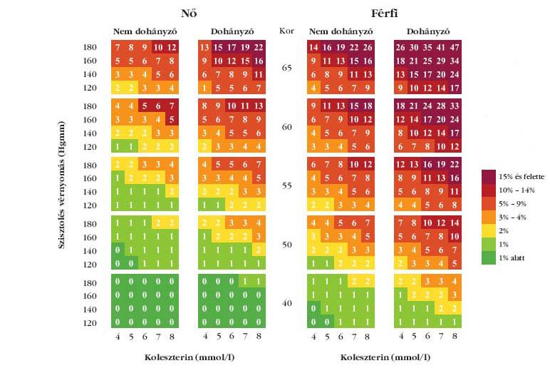 magas vérnyomás kockázati táblázat)