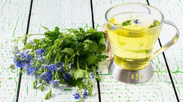 réti méh magas vérnyomás elleni gyógyászati tulajdonságai