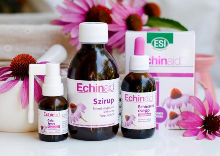 echinacea hipertónia esetén