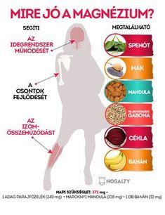 magas vérnyomás a hagyományos orvoslás legjobb receptjei hipertónia receptek