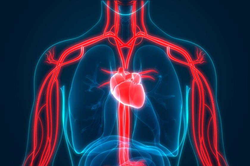 magas vérnyomás kérdéseket válaszol