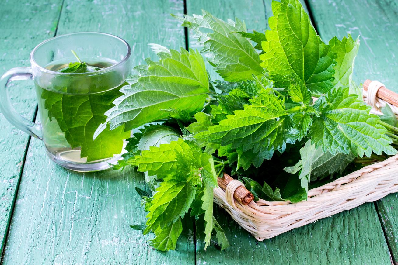 gyógynövények magas vérnyomás kezelése