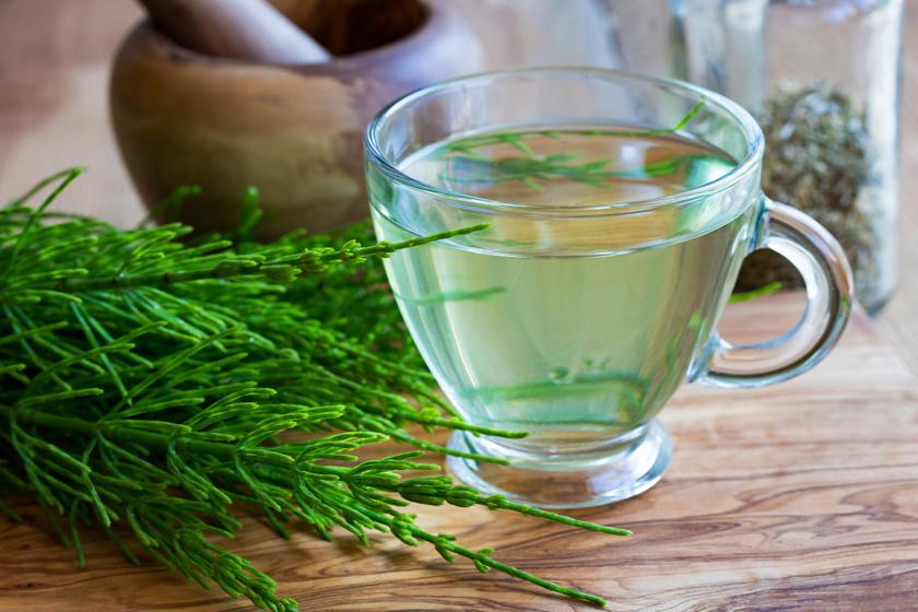 házi növények magas vérnyomás ellen)