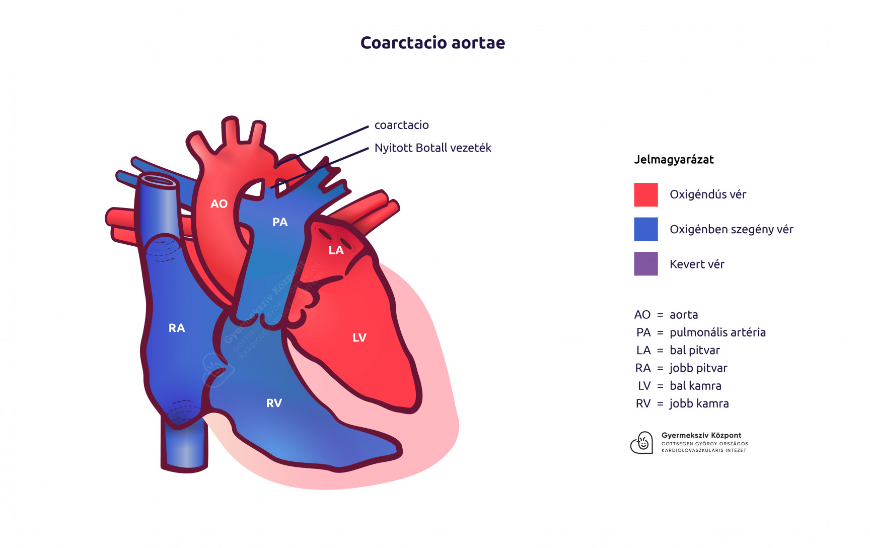 magas vérnyomás szívhibákkal)