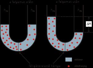 hipertóniás oldat (hiperozmotikus oldat), ozmózisos nyomás, izotóniás sejtnedv