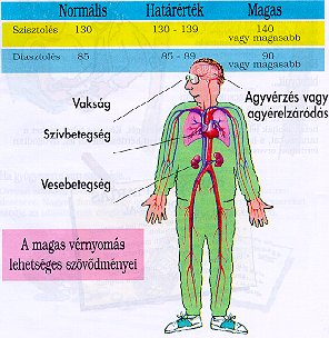 laboratóriumi diagnosztika a magas vérnyomás diagnosztizálásában mi az APF és a magas vérnyomás