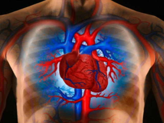milyen fizikai tevékenységeket végezhet magas vérnyomás esetén