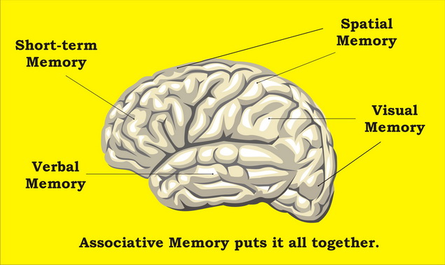 agyi magas vérnyomás elleni gyógyszerek