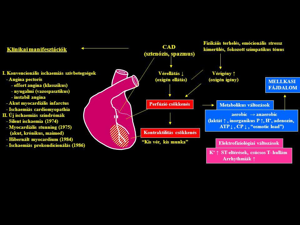 Az iszkémiás szívbetegség így előzhető meg - HáziPatika