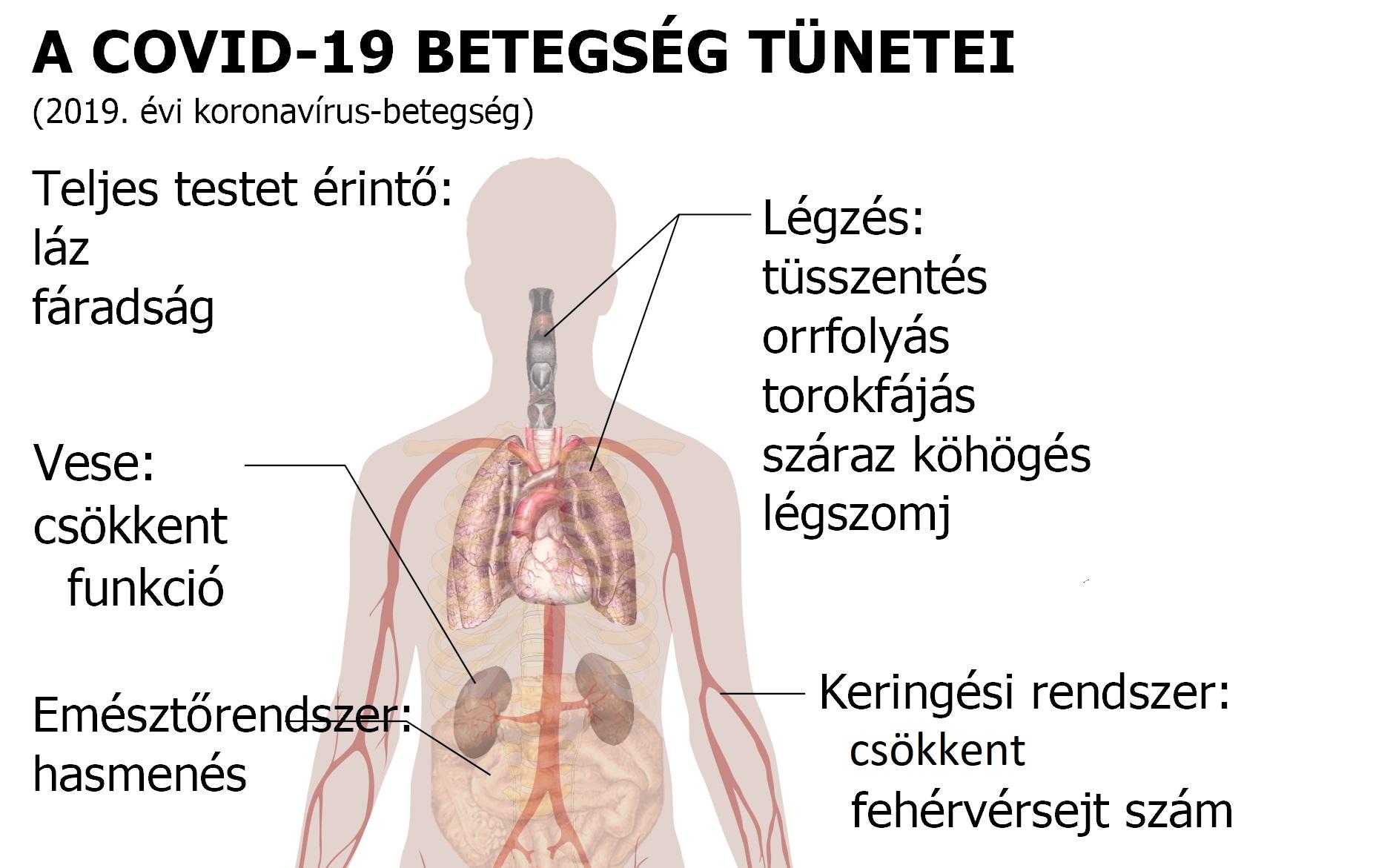 magas vérnyomás ápolási folyamat térkép