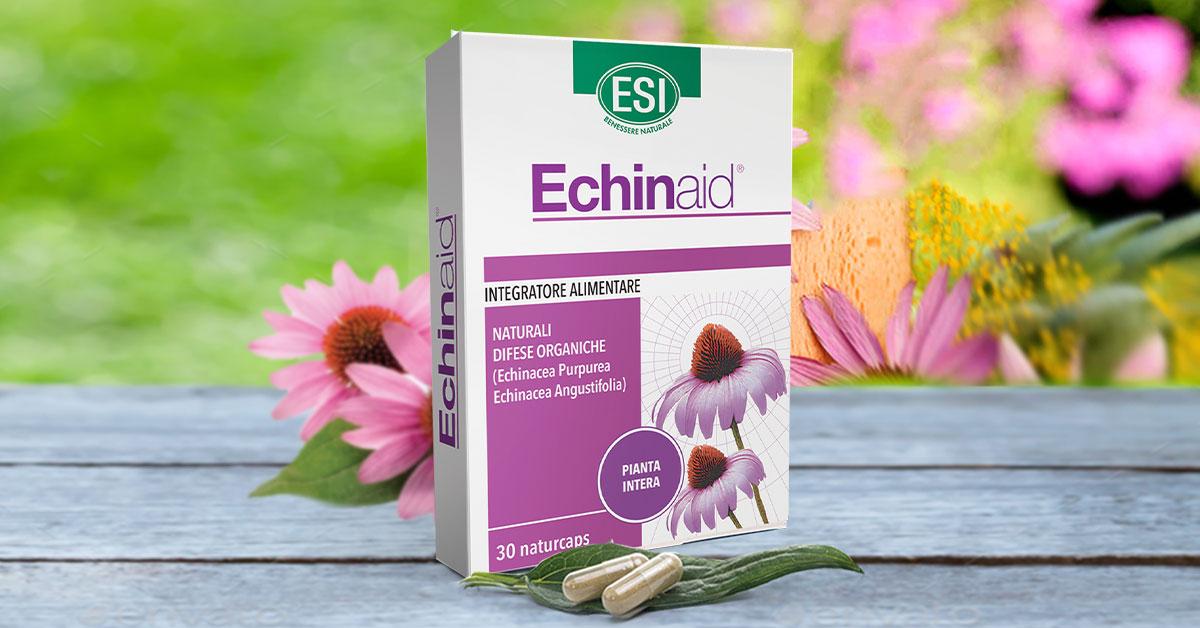 Echinacea tinktúra magas vérnyomás ellen hipertóniás személy