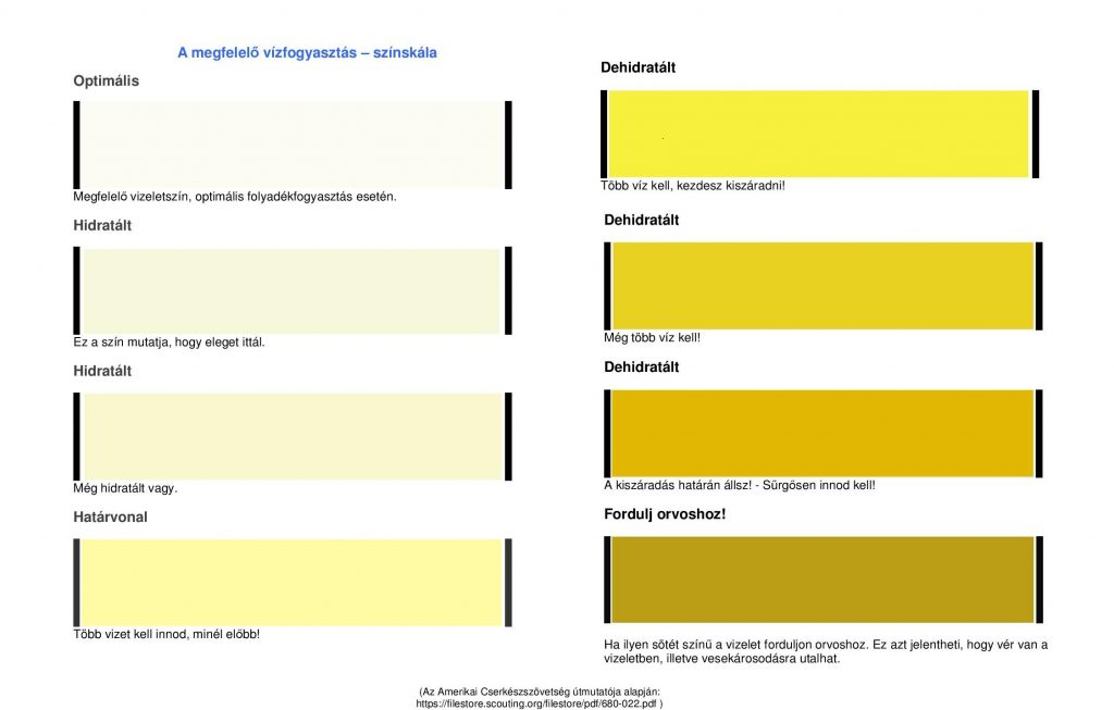 mennyi vizet kell inni magas vérnyomás esetén 2-3