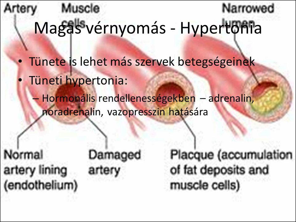 Hipofízis elégtelenség tünetei és kezelése - HáziPatika
