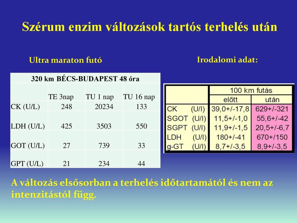 Terheléses vérnyomásértékek és a későbbi egészségi állapot