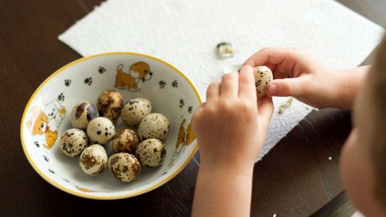 Fürj magas vérnyomás esetén. Kicsi tojás, ami naggyá tehet