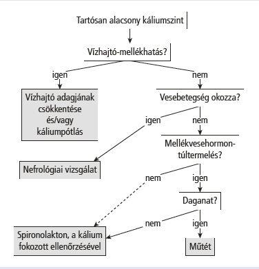 hipertóniához szükséges vizsgálatok)