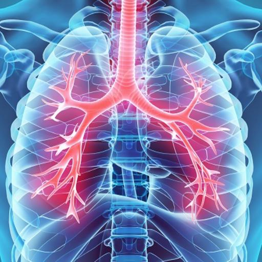 a magas vérnyomás első fokú kockázata 2 változások a célszervekben magas vérnyomás esetén
