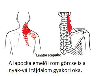 fájdalom a fül mögött, magas vérnyomás magas vérnyomás a sportolóknál