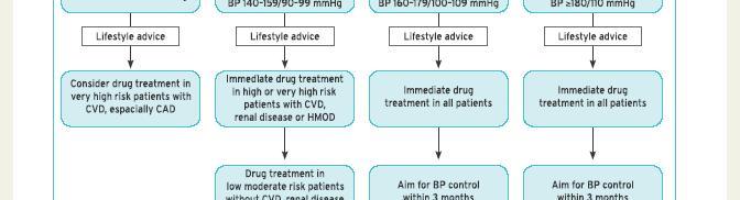 magas vérnyomás 2 fokú CVD 3 kockázata)
