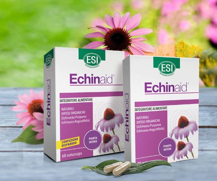 echinacea magas vérnyomás)