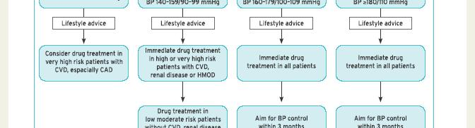 magas vérnyomás 2 fokú CVD 3 kockázata
