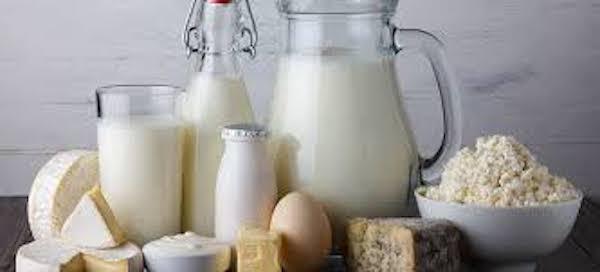 magas vérnyomás és tejtermékek
