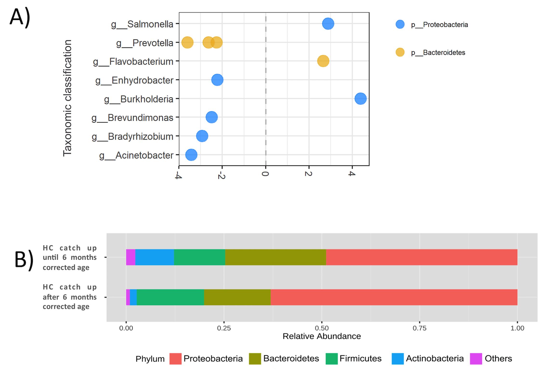 OTSZ Online - Bacillus clausii és a bélhomeosztázis: legfrissebb eredmények és jövőbeli kihívások
