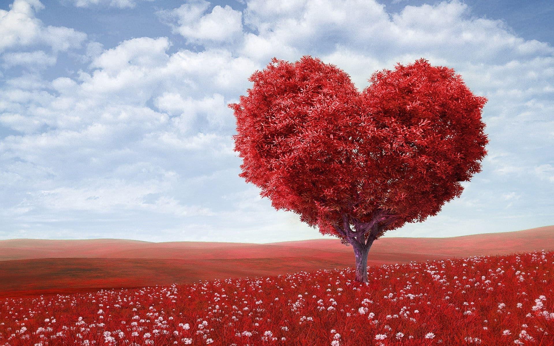 a szív magas vérnyomásának auskultálása)